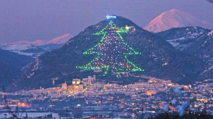 L'albero di Natale più grande del mondo